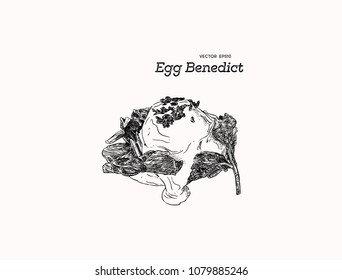 Eggs benedict or eggs florentine, English muffins, spinach , poached eggs, and delicious buttery hollandaise sauce. Hand draw sketch vector for cafe and restaurant.