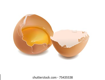 eggs smashed against a white background