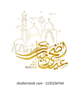 Eid Adha Mubarak arabic calligraphy with line mosque sheep and camel illustration for islamic greeting
