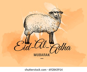 Eid-al-adha greeting card with doodle sheep on watercolor spots background. Vector illustration for muslim festival of sacrifice design.