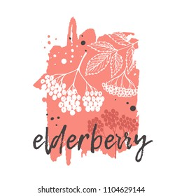 Elderberry concept design. Hand drawn vector illustration. Herbs and spices. Can be used for farmers market, food festival, menu, cafe, restaurant, bar, poster, banner, emblem, sticker, placard.