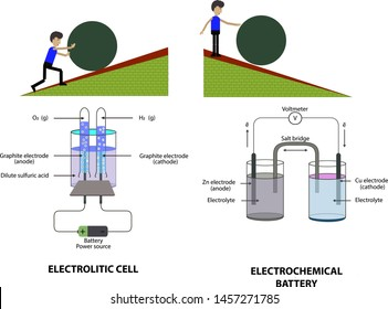 Electrochemical Cells Images, Stock Photos & Vectors