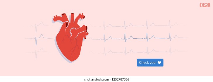Electrocardiography of the heart. ECG. EKG. Web banner design. EPS10