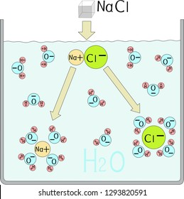 Electrolytic dissociation of sodium chloride in water