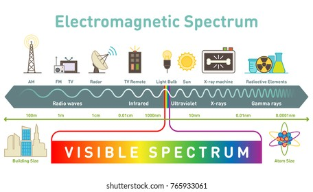 Electromagnetic spectrum diagram vector illustration