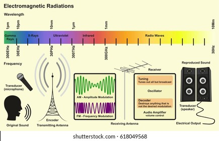 Vector waves electromagnetic radiation including electrical stock electromagnetic spectrum sources infographic diagram with radiations of gamma ray xray ultraviolet infrared radio waves wavelength ccuart Images