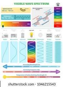 Electromagnetic Waves: Visible Wave Spectrum. Vector illustration diagram with wavelength, frequency, harmfulness and wave structure. Science educational information. Info poster.