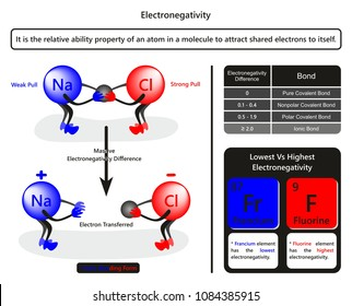 Electronegativity infographic diagram with example of sodium chloride showing how chlorine atom pull electron table related to bond forming due to electronegativity difference for chemistry education