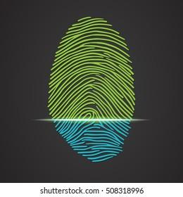 Electronic fingerprint scanner identification