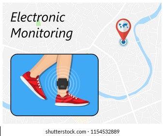 electronic monitoring EM tagging system tag territory offences  perpetrator
