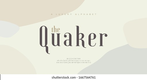 Elegant alphabet letters font and number. Classic Lettering Minimal Fashion Designs. Typography fonts uppercase and lowercase. vector illustration