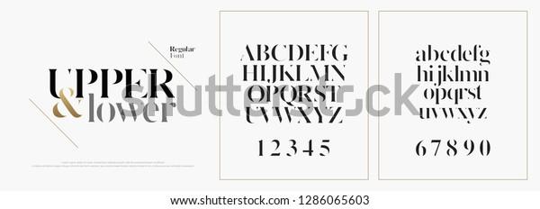 Elegant Alphabet Letters Font Set Classic Stock Vector