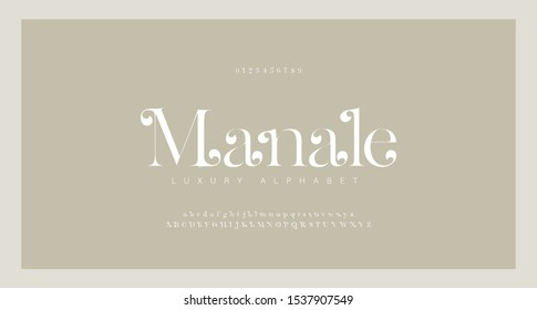 Elegant alphabet letters serif font and number. Classic Lettering Minimal Fashion. Typography Luxury fonts uppercase, lowercase and numbers. vector illustration
