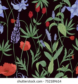 Elegant botanical seamless pattern with wild flowers and herbs on black background - field poppies, lupine, great burnet, granny's bonnet, peppermint. Floral vector illustration in antique style.