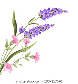 Elegant card with lavender flowers in watercolor paint style. The lavender frame and text. Lavender bouquet for your text presentation. Vector illustration.