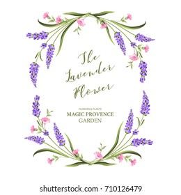 Elegant card with lavender flowers in watercolor paint style. The lavender frame and text. Lavender border for your text presentation. Vector illustration.