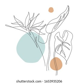 Elegant continuous line drawing. Minimal art flower and leaves isolated on white backgroud. Beautiful tropical florals illustration. Vector artwork for trendy design