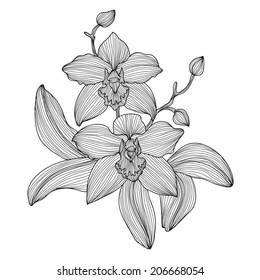 Orchid Tattoo Images Stock Photos Vectors Shutterstock