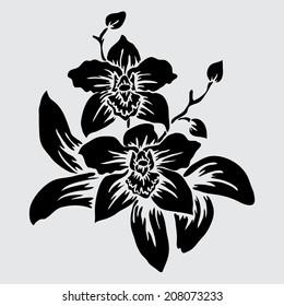 Elegant decorative orchid flowers, design element. Floral branch. Floral decoration for vintage wedding invitations, greeting cards, banners.