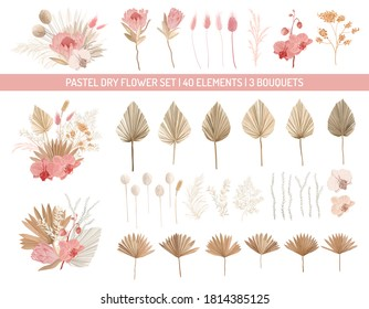 Elegant dry protea flowers, palm leaves, pale orchid, eucalyptus, dried tropical leaves, floral elements.Trendy winter, autumn wedding bouquets, vintage decoration. Vector isolated illustration set