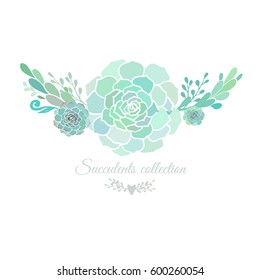 Elegant floral composition with succulents isolated on white. Vector illustration.