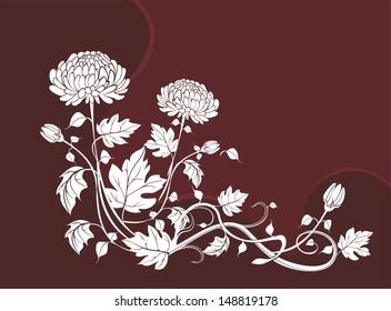 Elegant  flower background with chrysanthemums