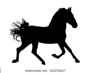 Elegant horse in gallop, vector silhouette illustration. Horse race, isolated on white background. Symbol of beautiful animal.