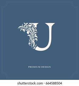 Elegant letter U. Graceful royal style. Calligraphic beautiful logo. Vintage drawn emblem for book design, brand name, business card, Restaurant, Boutique, Hotel. Vector illustration