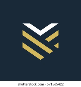 Elegant linear letter V shield logo.