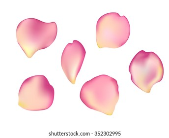 Elegant set of beautiful rose petals. Can be used for birthday cards, wedding albums or web design.