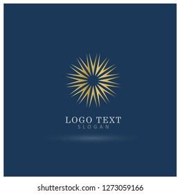 Elegant Sunburst Logo. Symbol & Icon Vector Template.