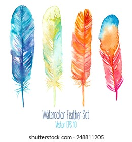 Elegant vector background with watercolor drawing feathers.
