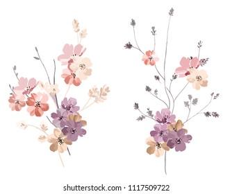 Elegant wild flowers