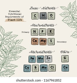 Elemental nutritional requirements of plant life, Hand draw chart design vector. Guide of Macronutrients and Micronutrients for Plants
