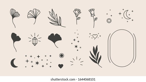 Elements for logo design - rose, Ginkgo Biloba Leaf, Stars, moon, Frame. Vector illustration in a minimal linear style. To create logos, prints, patterns, posters, and other designs