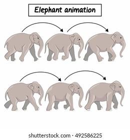 Elephant animation