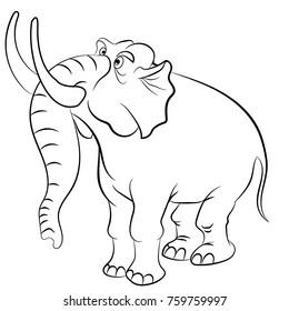 elephant, children animals zoo