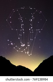 Elephant constellation vector illustration. Elephant in constellations and star on mountain forest landscape. Starry elephant in deep dark sky with line and shiny dots