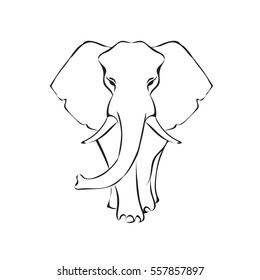 Elephant hand-drawn black and white outline vector