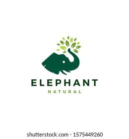 elephant head leaf leaves tree logo vector icon illustration