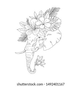 Elephant Head Side View Hand Drawn Stock Vector Royalty Free 1492401167