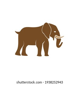 Elephant  icon design template vector isolated