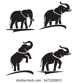 Elephant icons. Animal icon. Elephant collection - vector silhouette
