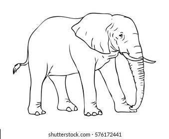Elephant Outline Images, Stock Photos & Vectors | Shutterstock
