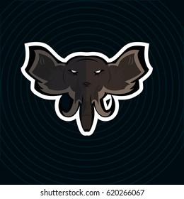 51fe39b54 Shark Logo Design Sport Stock Vector (Royalty Free) 584897686 ...