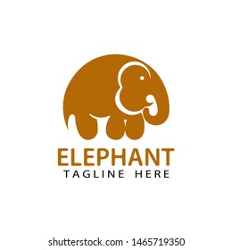 elephant logo template design vector with isolated white background