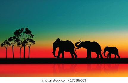 Elephant. Mother with Baby Elephants Walking Outdoors over Sunset