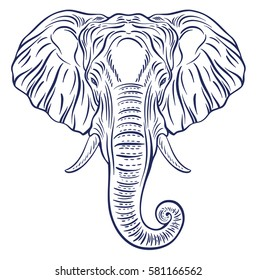 Elephant portrait isolated on white background. Decorative hand drawn doodle vector illustration