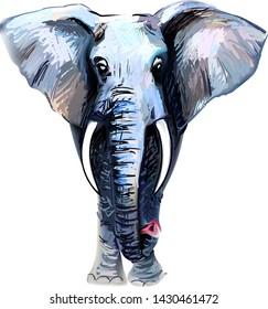 elephant print illustration vector realistic