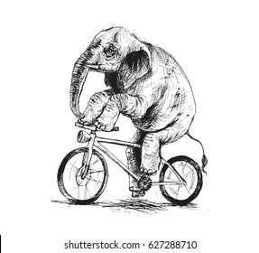 Elephant riding bicycle, Hand Drawn Sketch Vector illustration.
